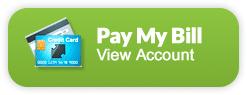 Pagar la factura